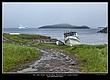 3062 -Icebergs -St Lunaire-Griquet.jpg