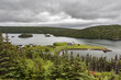 _MG_1658 -Argentia frm 7 Islands Lookoff.jpg
