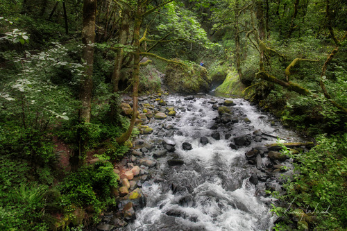 Bridal Veil Creek1.jpg