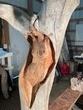 Whidbey Island Driftwood Detail.jpg