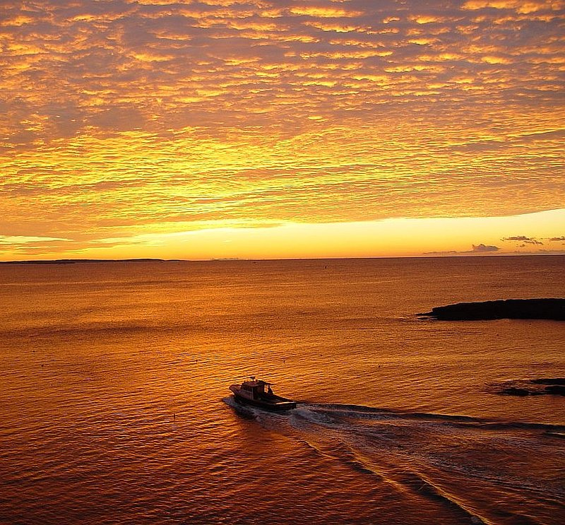 Sunrise Casco Bay 20X20.jpg