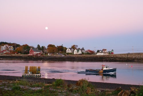 Moon Over Orrs Island 20X30.jpg