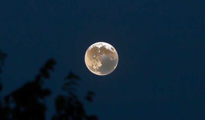 Summer Moon IMG_4002.jpg