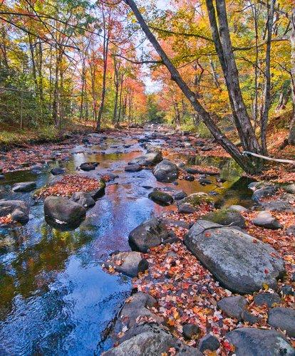 Western Maine-98.jpg