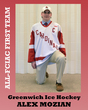 All-FCIAC Boys Hockey Greenwich Mozian.jpg