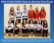 All-FCIAC Girls Ice Hockey Team copy.jpg
