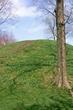 1L411 Campbell Mound.jpg