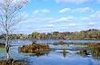 3B169 Killbuck Marsh State Wildlife Area.jpg