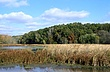 3B172 Killbuck Marsh State Wildlife Area.jpg