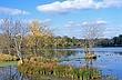 3B173 Killbuck Marsh State Wildlife Area.jpg