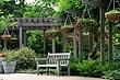 8M19 Mt. Airy Arboretum.jpg