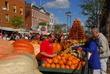 D21T3 Circleville Pumpkin Show.jpg