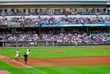 D24W-14-Dayton Dragons.jpg