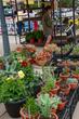 D30U-84-Perrysburg Farmers Market.jpg