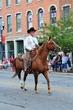 D35T-326-All Horse Parade.jpg