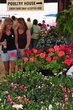 D38T-34-Toledo Farmers Market Flower Days.jpg