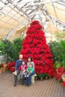 D91L-75-Holidays at the Conservatory.jpg