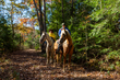DX10A-6927-Horseback Riding in Hocking Hills.jpg