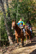 DX10A-6936-Horseback Riding in Hocking Hills.jpg