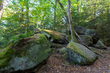 DX28A-275-Ritchie Ledges.jpg