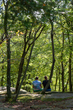 DX28A-337-Cuyahoga Valley National Park Overlook.jpg