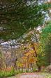 DX36A-446-Shawnee State Park.jpg