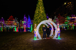 DX98L-403-Holiday Lights at Columbus Commons.jpg