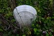 FX4A-22-Bigelow Pioneer Cemetery.jpg