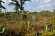 FX4A-32-Bigelow Pioneer Cemetery.jpg