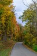 FX103T-166-Fall Festival of Leaves.jpg
