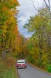 FX103T-170-Fall Festival of Leaves.jpg