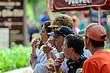 FX15T-207-Ice Cream Festival.jpg