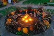 FX23D-309-Fall Mums and Pumpkins Festival.jpg