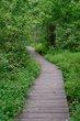 FX85A-205-Glen Helen Nature Preserve.jpg