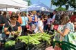 FX93T-172-Worthington Farmers Market.jpg
