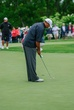 D12W-457-Tiger Woods.jpg