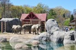D1F-832-Cleveland Zoo.jpg