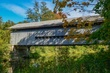 FX1J-234-Doyle Road Covered Bridge.jpg