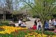 D1F-604-Cincinnati Zoo Blooms.jpg