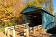 D1J-26-Mt. Olive Road Covered Bridge.jpg