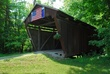 D1J-95-Hizzy Covered Bridge.jpg