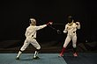 D29W-1866-Arnold Fencing Classic.jpg