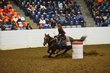 FX12T-359-All American Quarter Horse Congress.jpg