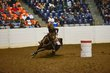FX12T-360-All American Quarter Horse Congress.jpg