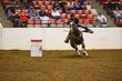 FX12T-379-All American Quarter Horse Congress.jpg