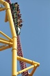FX1Z-721-Top Thrill Dragster.jpg