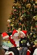 FX13L-294-Ohio Statehouse Holiday Festival and Tree Lighting.jpg