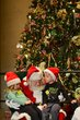 FX13L-296-Ohio Statehouse Holiday Festival and Tree Lighting.jpg