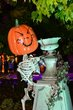 FX1Z-838-Halloweekends.jpg
