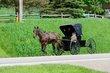 FX3Y-589-Holmes County.jpg
